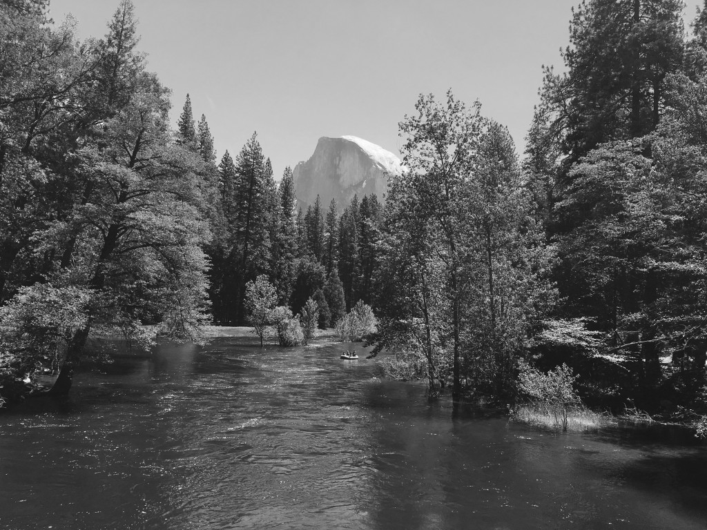 Half Dome B&W from Sentinel Bridge