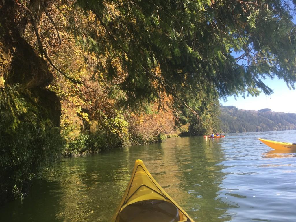 last-paddle