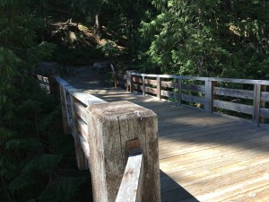 Box Canyou Trail - Wooden Bridge Over Canyon