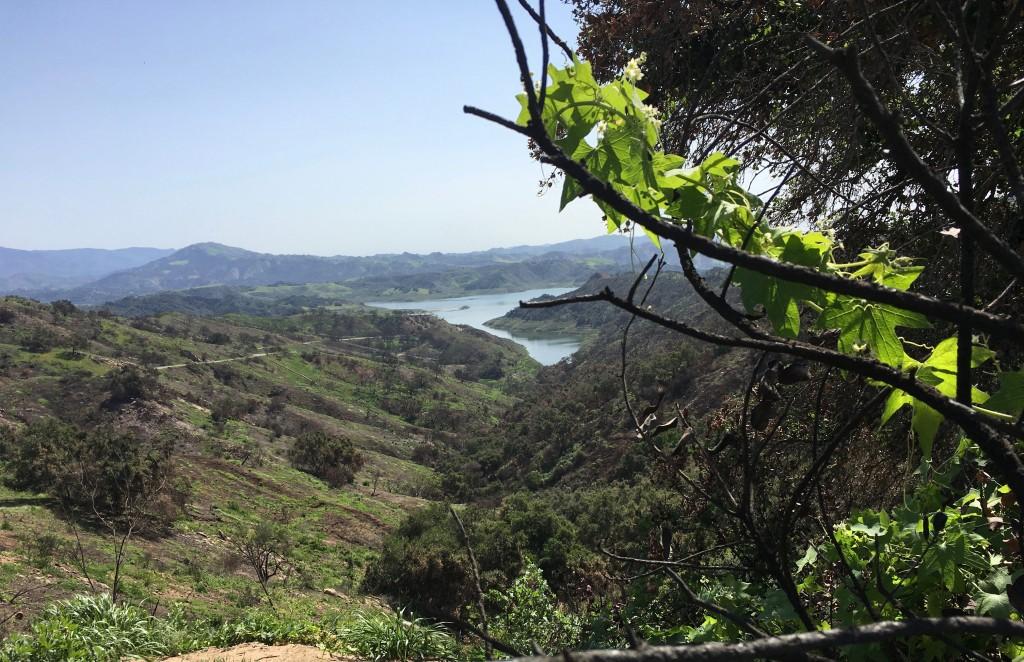 FW-Lake Casita #1