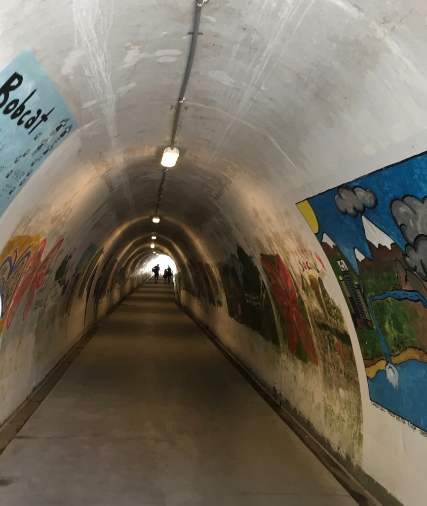 O-Tunnel