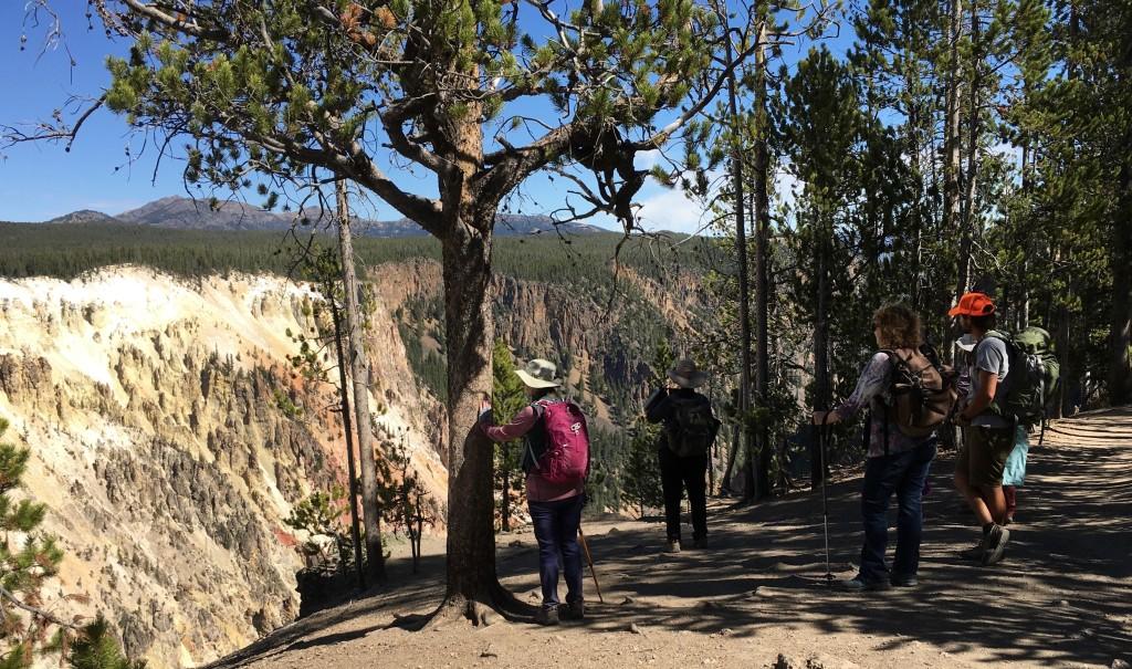 YGT - Grand Canyon Edge
